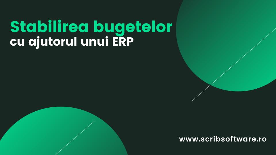 Stabilirea bugetelor cu ajutorul unui ERP